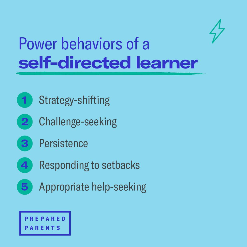 the power behaviors of a self-directed learner are strategy shifting, challenge seeking, persistence, responding to setbacks, and appropriate help-seeking.
