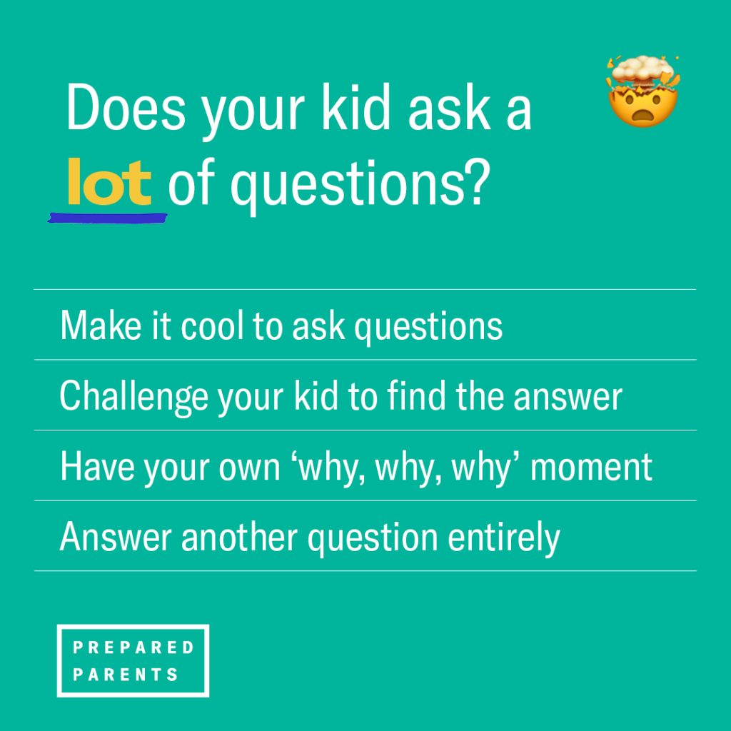 Does your kid ask a lot of questions? Encourage it, challenge your kid to find the answer, have your own questioning moment, answer another question